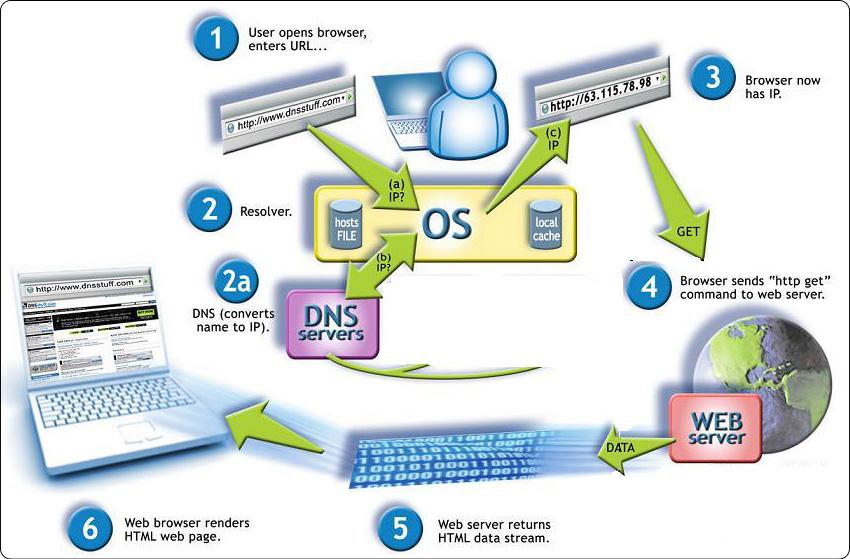 Mô hình hoạt động DNS